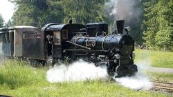 Na Liptove obnovia historickú lesnú železničku: Paráda za státisíce eur!
