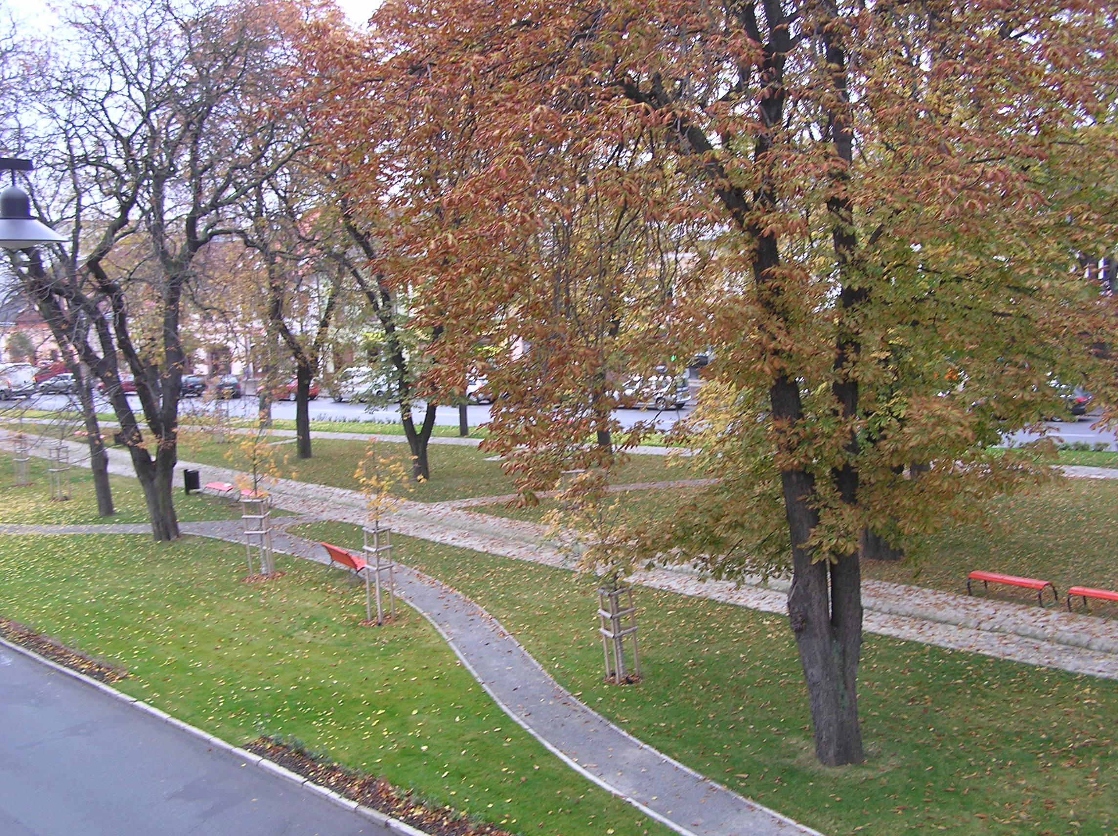 Rekonštruovaný centrálny park