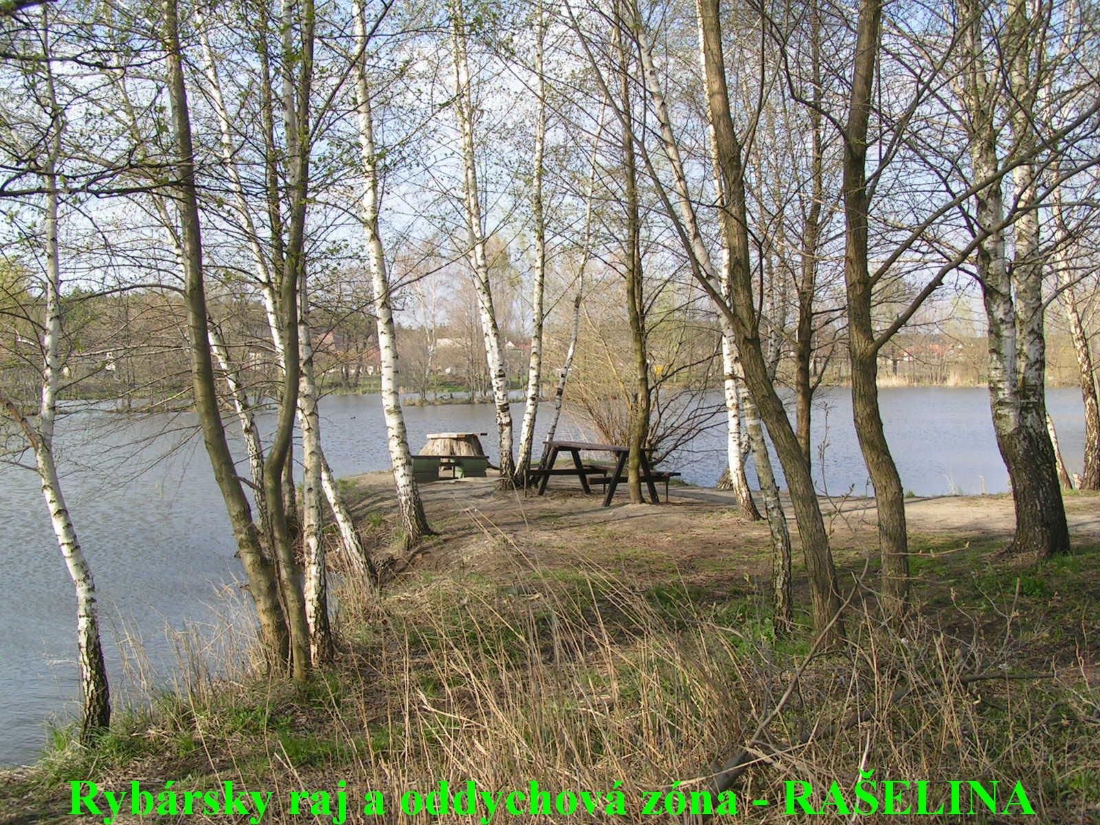 Oddychová zóna a rybársky raj  -  RAŠELINA