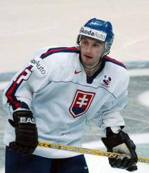Ľubomír Višňovský - hokejista, Najlepší hokejista Slovenska ankety Zlatý puk 2005