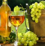 Tokajská vínna cesta