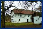 Brestovec 4