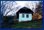 Brestovec 5