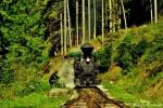 Nová Bystrica - historická lesná úvraťová železnica